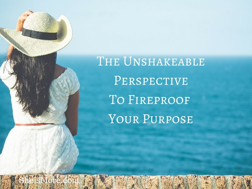 The UnshakeablePerspectiveTo Fireproof Your Purpose